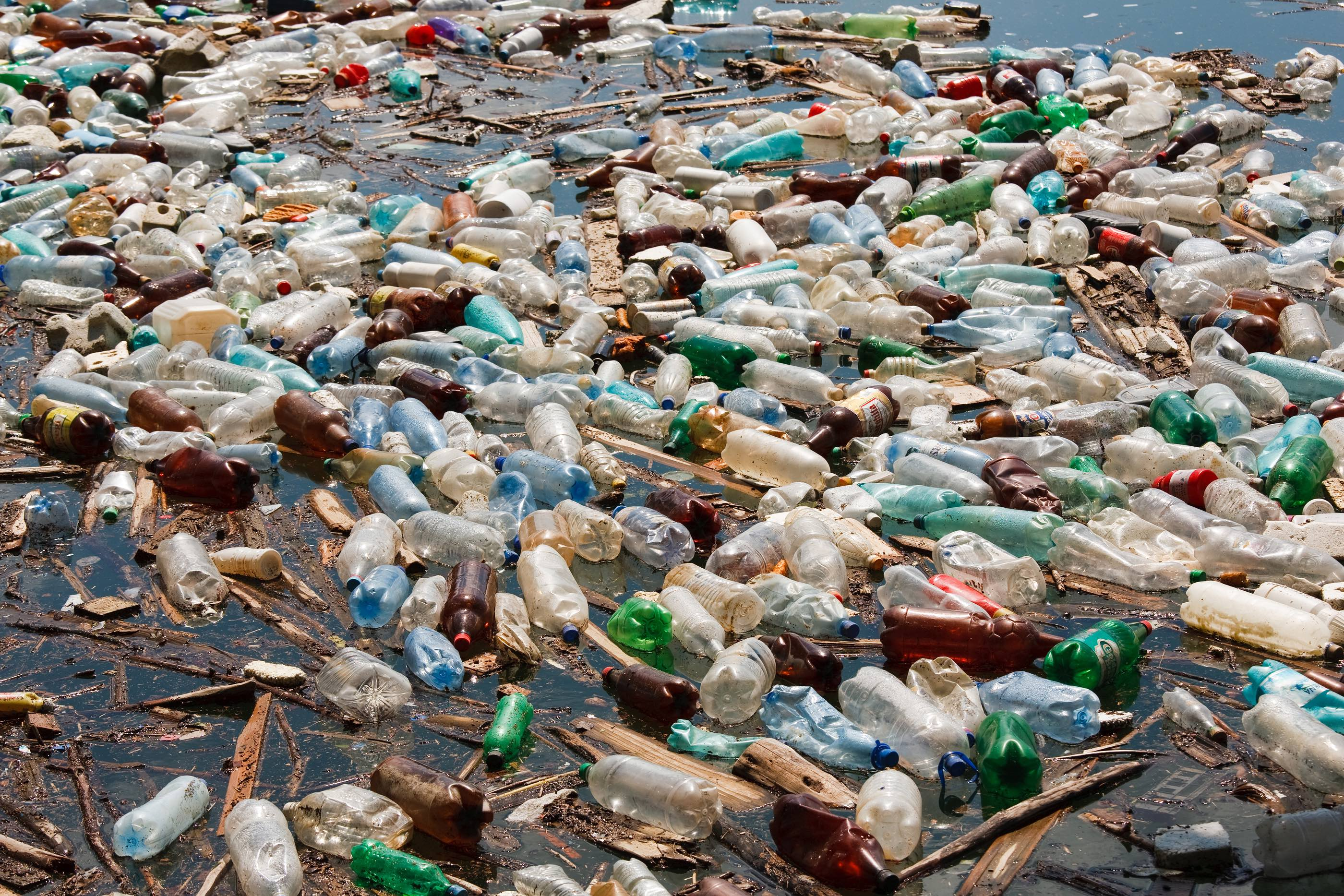 World Oceans Day: Recycling Helps the Planet!